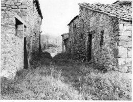 badia1920-2